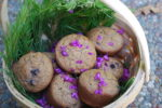 Manzanita Muffins with Redbud Flowers