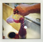 Elderberry Soda